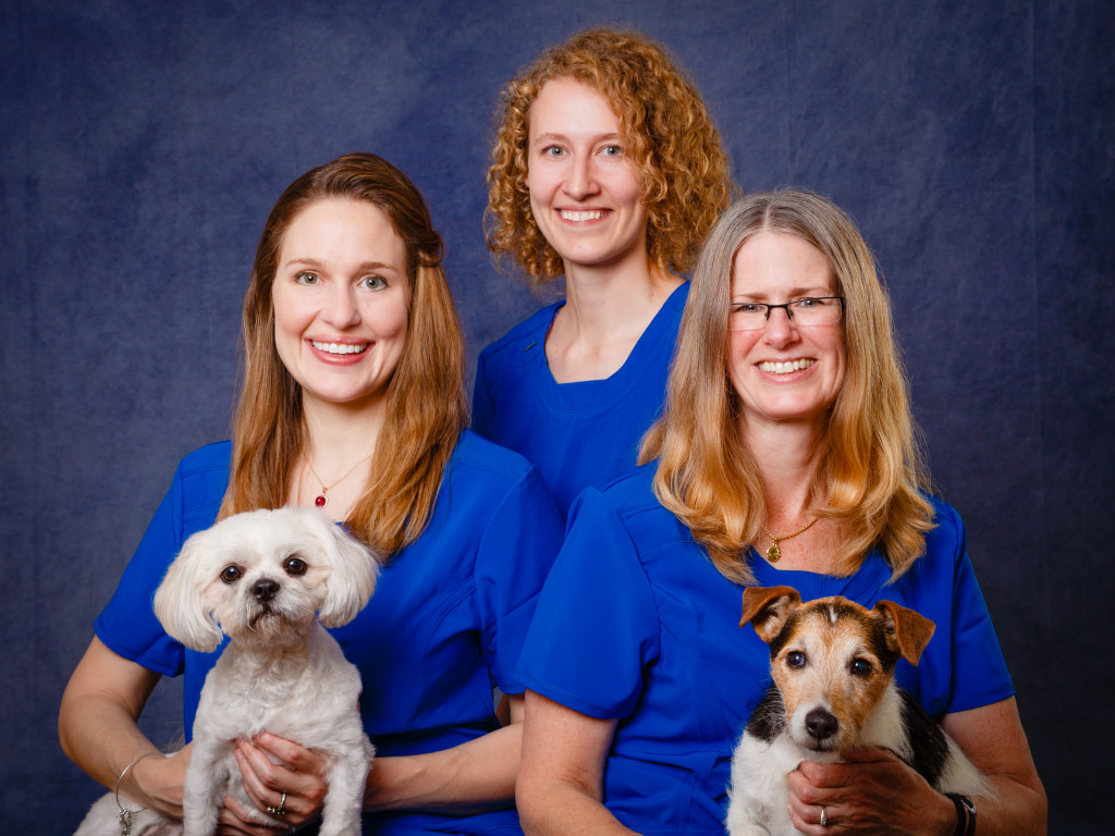 Portrait of the 3 vets at Journeys Home Pet Euthanasia