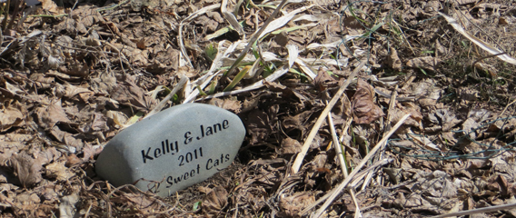 Memorial stone for 2 sweet cats in fall garden