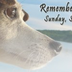 Remembering Our Pets 2013 Photos