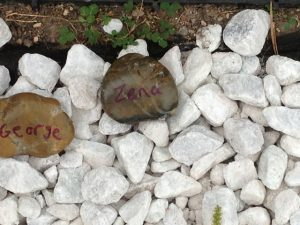 Rock garden with pet names from  Remember our pets event 2013