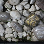 Memory stones for Buster, Thor & George