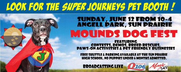 Meet Dr Katie and friends at our super booth - Mounds Dog Fest 2016