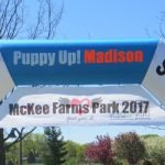 Photos & Videos – Puppy Up Madison 2017
