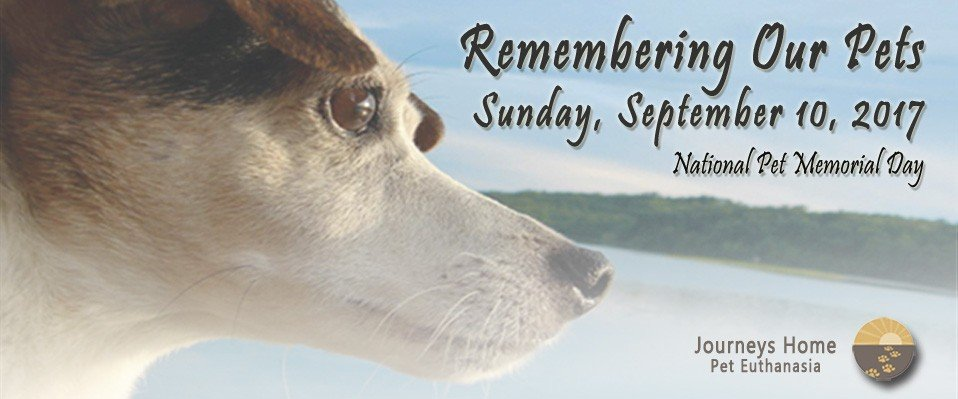 Remembering Our Pets invitation for 2017 (Sad dog with lake in background.)