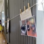 memorial photos of pets