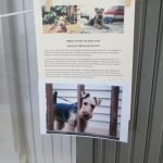 Story and photos in memory of Toby