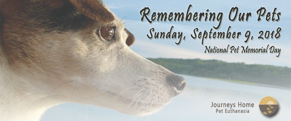Invitation to Remembering Our Pets September 9, 2018