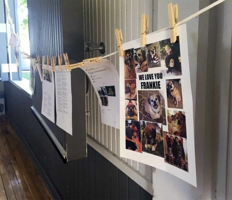 Pet tributes hanging by clothespins from Remembering Our Pets 2018