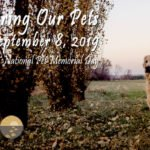 Videos: Remembering Our Pets 2019