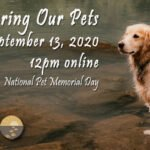 Virtual Remembering our Pets 2020 – Program video
