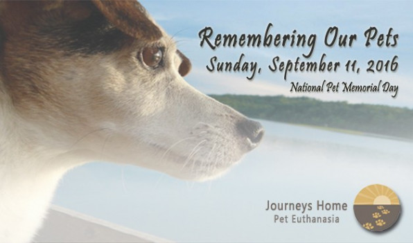 Remembering Our Pets 2016