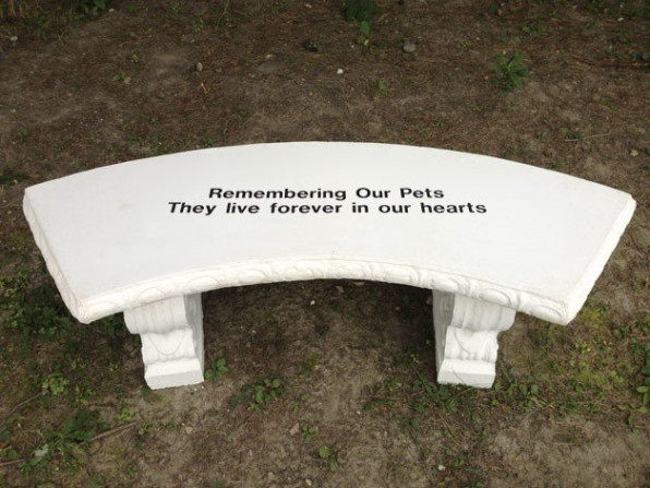Remembering our pets, we hold them in our hearts - stone bench