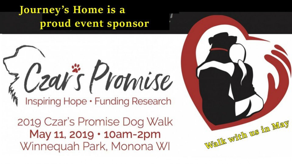 Invitation: Walk to fight canine cancer
