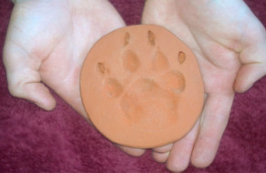 hands holding clay paw print of dog