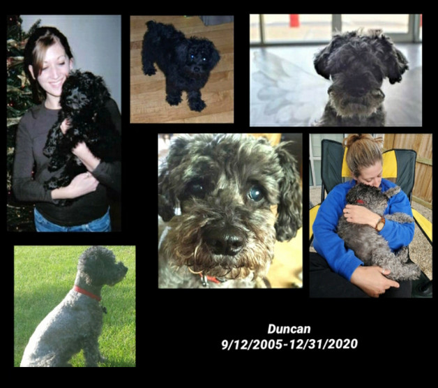 a collage of photos of Duncan and Samantha
