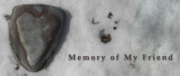 heart shaped stone says memory of my friend - a placeholder when an image is not provided