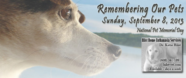 Pet Memorial Day event in Madison, WI Sunday 9/8 2013