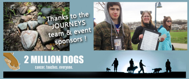 Thanks to my Journeys team - see puppy up event pictures